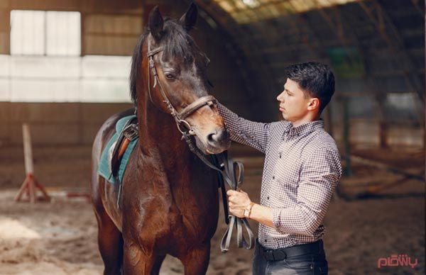 باشگاه اراز اسب ارومیه